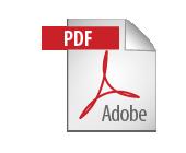 icon_pdf@2x