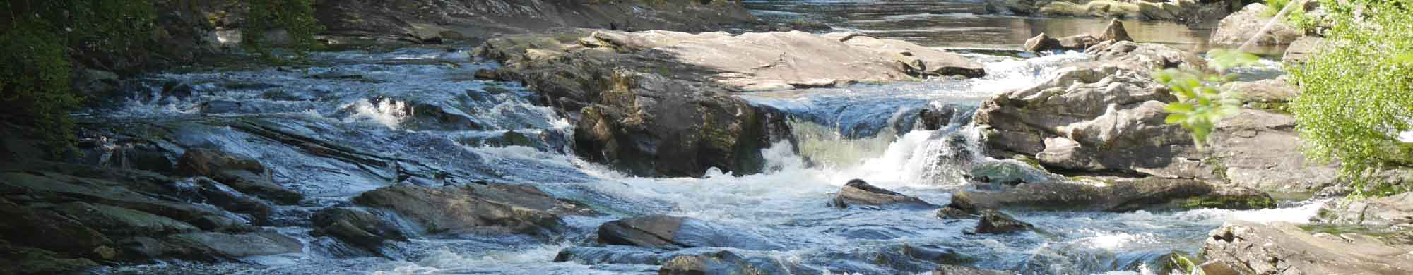 banner-green-meetings-river